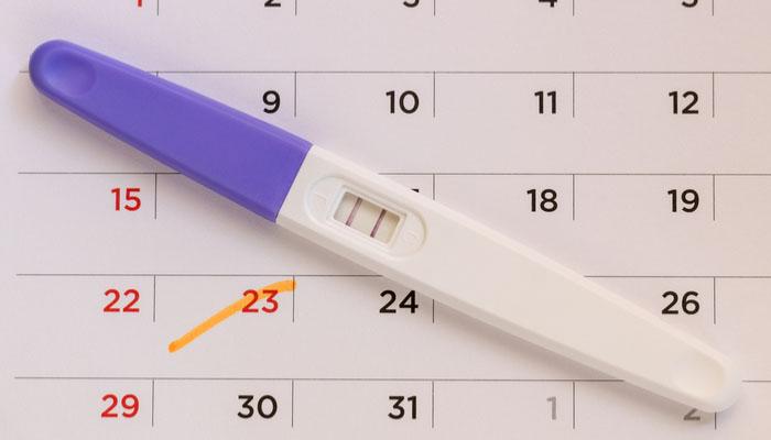 bebeğin cinsiyeti kaçıncı haftada belli olur